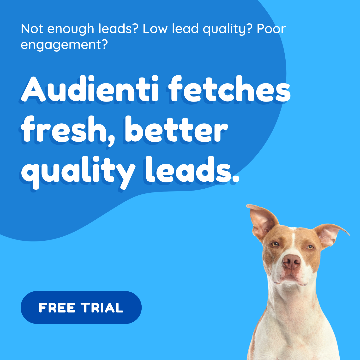 Audienti Sniffs Out Leads (1)